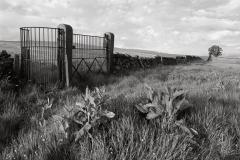 Kissing Gate, Duchy Of Lanaster Estate, Whitewell - Ref: 2434